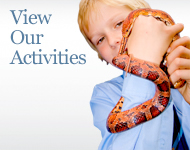 View Our Activities