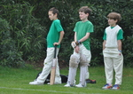 Inter House Cricket April 2015