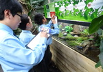 Year 6 Living Rainforest field trip