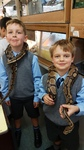 Snake club Feeding day - fun and animals