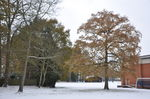 The grounds in a coat of snow!
